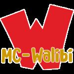 Minecraft Pretpark MC-Walibi