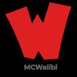 Minecraft Pretpark MCWalibi